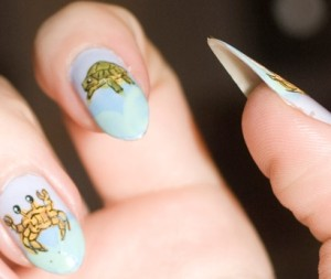 Nails turtle